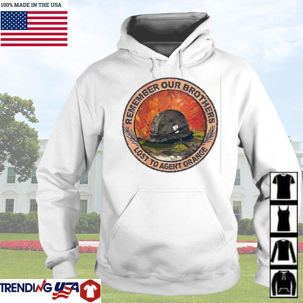 Sodliers remember our brothers lost to agent orange s Hoodie
